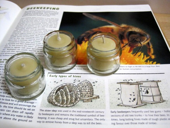 Beeswax candles, as provided by nature